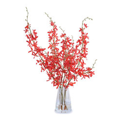 Spider Orchid Arrangement, Red