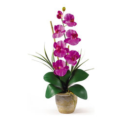 Nearly Natural - Single Stem Phalaenopsis Silk Orchid Arrangement - Bursting with color and personality the Phalaenopsis is perhaps the most popular variety of all the orchids. Six lively blooms and two buds are complimented by genuine bamboo, which enhances the silk plant's authenticity. Featuring nearly natural leaves, moss and roots, this familiar favorite is sure to charm the masses. Color: Orchid, Height: 21', Vase: H 4-1/4' W 5-1/4'