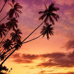 Magic Murals - Hawaiian Palm Trees Island Wallpaper Wall Mural - Self-Adhesive - Multiple Sizes - Hawaiian Palm Trees Island Wall Mural