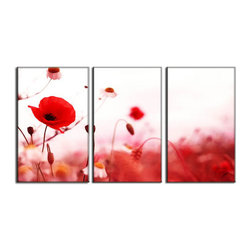 Vibrant Canvas Prints - Canvas Art Prints, Framed 3 Panel Mountain Tree Natureand Decor - This is a beautiful, 100% quality cotton canvas print. This print is perfect for any home or office, and will make any room shine with its addition of color and beauty.  - Free Shipping - Modern Home and Office Interior Decor   Poppy Flower Canvas Designs - 3 Panel Print   Red Poppy Flower Print on Canvas - Wall Art - 30 Day Money Back Guarantee.