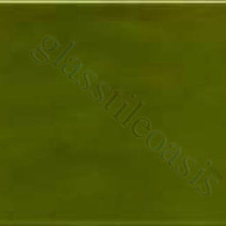 "Glass Tile Oasis - Nopal 3"" x 6"" Green 3"" x 6"" Field Tile Glossy Ceramic - All ceramic tiles are hand painted. Glazed thickness will vary from tile to tile, resulting in color variation. Hand-Painted Ceramic tiles will craze and crackle over time, which is intentional and a desired effect."
