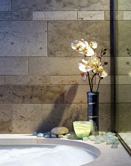 Contemporary Bathroom by Elliott Kaufman