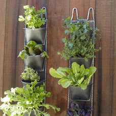 modern outdoor planters by Pottery Barn