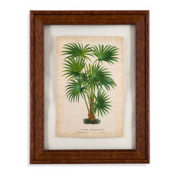 Bassett Mirror - Bassett Mirror Framed Under Glass Art, Palm of the Tropics IV - Palm of the Tropics IV