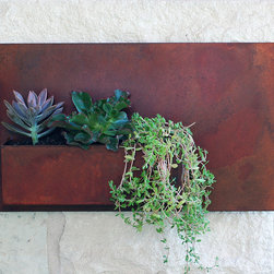 "12"" x 20"" Wall Planter - Living art. This modern wall planter adds flair and style to vertical gardening, indoors and out. Hang several on a wall for dramatic impact, or let it stand alone. Looks particularly great with succulents!"