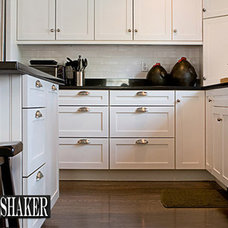 Modern Kitchen Cabinetry by RTA Cabinet Store