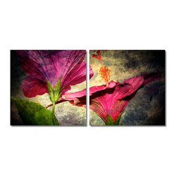 READY2HANGART.COM - Ready2hangart Alexis Bueno Hibiscus (2-PC) Canvas Wall Art Set - This Hibiscus canvas set was inspired by the Caribbean Island of Antigua; full of subtle beauty and unspoken elegance. It is fully finished, arriving ready to hang at your home or office.
