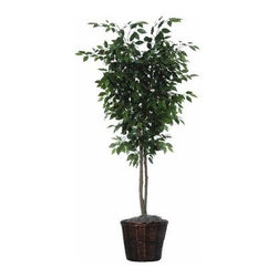 6 ft. Ficus Deluxe Tree - About VickermanThis product is proudly made by Vickerman, a leader in high quality holiday decor. Founded in 1940, the Vickerman Company has established itself as an innovative company dedicated to exceeding the expectations of their customers. With a wide variety of remarkably realistic looking foliage, greenery and beautiful trees, Vickerman is a name you can trust for helping you create beloved holiday memories year after year.