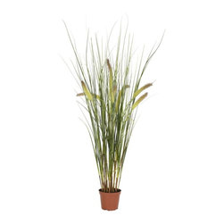 2.5' Grass Plant - Spring will always remain in the air when it comes to this wispy PVC Grass plant. Standing at 2.5' tall, this delightful sprig of grass will add the right kind of flourish to your kitchen, dining room, or any other area in the house. And unlike real grass, this plant only needs the slightest bit of care (dust it once a month!), and is a perfect accent to any arrangement. Height= 30 in x Width= 7 in x Depth= 7 in