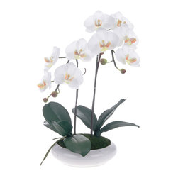 Red Vanilla - White/ Yellow Artificial Silk Phalaenopsis Orchid Centerpiece with White Ceramic - This white and yellow phalaenopsis orchid blooms in an oval-shaped base to create a gift of stylish simplicity and grace. Tall and luscious,this true-to-life orchid brings greeenhouse beauty to any indoor setting.