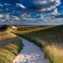 Martha's Vineyard Dune Path Photography - Katherine Gendreau