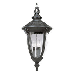 Progress Lighting - Progress Lighting P5520-31 Meridian Three-Light Cast Aluminum Chain-Hung Outdoor - *Three Light Outdoor Pendant