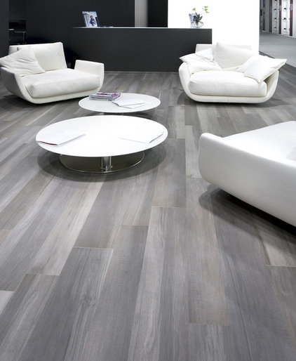 Contemporary Living Room by Cercan Tile