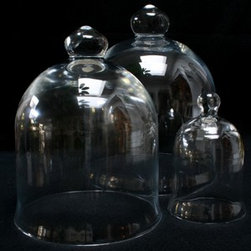 Glass Cloche - These glass cloches are perfect for displaying your own home collections. Fill it with flowers, seashells, even photos, and you have a beautiful display piece.