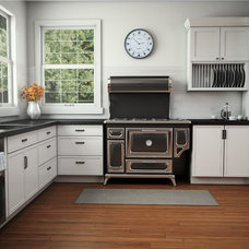 Contemporary Major Kitchen Appliances by AGA MARVEL