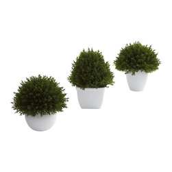 Nearly Natural - 3-Pc Mixed Cedar Topiary Set - Includes three cedar plants with beautiful planters. Perfect for home or office. Made from silk. Green color. Planter: 3 in. L x 3 in. W x 2.5 in. H. Small: 4.5 in. L x 4.5 in. W x 5.5 in. H. Small: 5.5 in. L x 5.5 in. W x 6.5 in. HSometimes a subtle, accent decoration fits the bill. That's exactly what these mixed cedar topiaries provide.