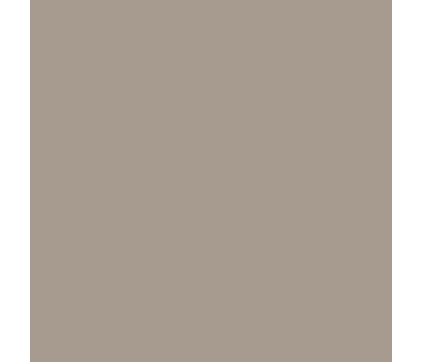 Paint And Wall Covering Supplies Shenandoah Taupe AC-36