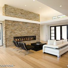 Contemporary Living Room by Natural Stone Veneers International, Inc.
