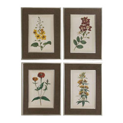 Uttermost Floral Varieties Framed Art, S/4 - See special instructions. Prints are accented by dark brown, nubbly and loosely woven linen mats. Frames and matching fillets have a silver leaf base with light champagne wash.