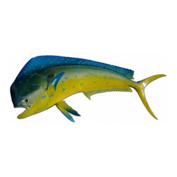 "Troy Denson - 40"" Mahi Half Mount Fish Replica - Also known as a Dorado or Dolphin.  This half mount measures 40"" long.  It has bright greenish blue above, yellow on sides, with the capability of flashing purple, chartreuse, and a wide range of other colors.  Its body tapers sharply from head to tail and has irregular blue or golden blotches scattered over sides.  The anterior profile of head on adult males (bulls) is nearly vertical and the head of females (cows) more sloping."
