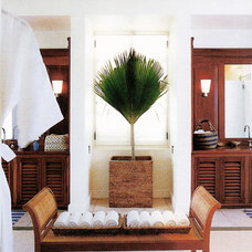 Tropical Bathroom by Jennifer Bradford Davis Interior Design