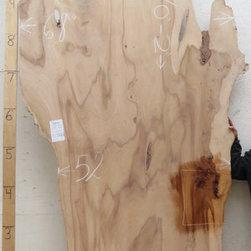 English Elm Wood Slab 3192x2 - ENGLISH ELM (Ulmus Procera)