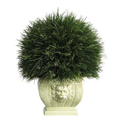 Potted Grass with White Vase (Indoor/Outdoor) - A favorite among Japanese gardeners, this lively Acorus grass makes an excellent choice for a topiary display. Wispy vividly colored green stalks sprout forth from every direction. Although shaped in a traditional ball design, this wild topiary is anything but ordinary. Over 18 inches high, it makes a nice addition to an indoor or outdoor patio or sunroom. A unique ornamental vase further compliments this plant's whimsical appeal. Height= 18.5 in x Width= 16 in x Depth= 16 in
