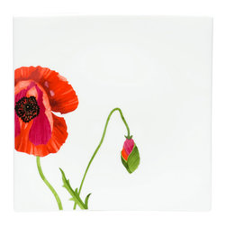 Red Vanilla - Red Vanilla 'Summer Sun' Set of 4 Salad Plates - Brilliant red poppies blooming on these ultra-white bone china plates create a bold,striking table. The vivid blossoms and crisp,square shapes of this Red Vanilla set provide a beautiful backdrop for your culinary creations.