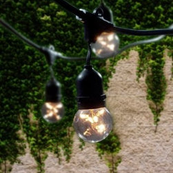 """Bulbrite - Bulbrite 810003 Clear String Light Pack of (15) Outdoor String Light - Bulbrite is a leading manufacturer and supplier of innovative, energy-efficient light source solutions. Founded nearly 40 years ago, Bulbrite is a family owned business renowned for its commitment to innovation, education and new technology. Bulbrite offers an extensive line of light bulbs and lamping options including LED, HID, CFL, Fluorescent, Halogen, Krypton/Xenon, Incandescent, and a broad range of specialty lamps. Stylish string light fixture is the perfect way to enhance any outdoor landscape. This 48  string is UL approved for outdoor use and features 15 medium (E26) base sockets. Able to string up to 4 sets together with a 1500 wattage max for the entire line Features:  Perfect for patio lighting, gazebos, porches, outdoor events, parties, and restaurants/bars Commercial grade UL rated string light can withstand the wear and tear of outdoor use Dimensions: Maximum Overall Length 48 ft. cord with 3 ft. spacing between each socket  Specifications:  Number of Bulbs: 15 Medium Base (E26), Globe bulbs (G16kt) Included Space between Bulbs: 36"""" Bulb Base: Medium (E26) Bulb Type: Incandescent Wattage: 1500 Voltage: 120 Beam Spread: 360 Degrees Connect up to 4 string"""