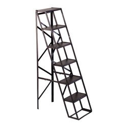 Aberdeen Iron Display Ladder - This tall shelf has stacks of style. Built of sturdy black iron and dark hardwood, it's made to resemble a vintage library ladder with plenty of space for books, plants, or decorative objects from A to Z. Aren't you overdue for a new look?