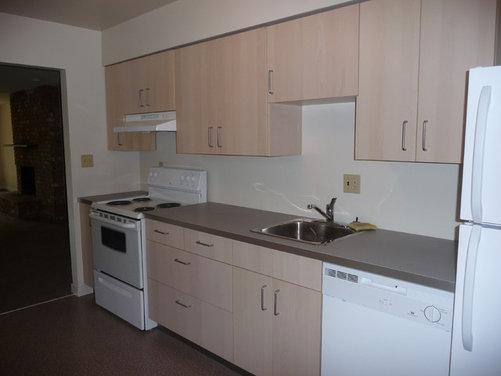 Inexpensive backsplash ideas for basement galley kitchen for Galley kitchen backsplash ideas