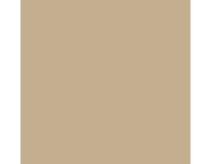Paint by benjamin moore for Cream beige paint color