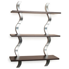Contemporary Display And Wall Shelves  by Danya B