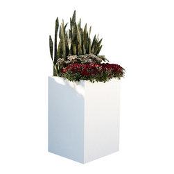 """Green Seasons - 48""""x24"""" Privus-Wall Planter - 48""""x24"""" Privus-Wall Planter"""