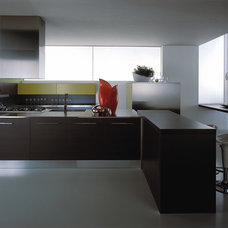 Modern Kitchen Cabinetry by European Cabinets & Design Studios