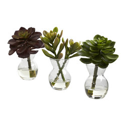 Nearly Natural - Succulent Arrangements (Set of 3) - We loooove succulents. The colors, the lushness, the soft shapes, just looking at them brings a sense of peace and calm. This is a set of three distinct succulents, each in their own little vase, complete with liquid illusion faux water. Bring a fresh, clean look to any area (with three pieces, you have plenty of decorating options). perfect for home and office, and makes a great gift as well.