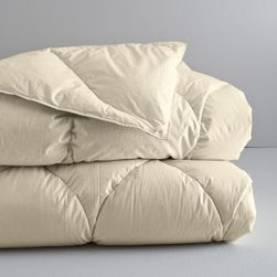 Eileen Fisher - Eileen Fisher Organic Cotton and Down Comforter - Double/Queen - This Eileen Fisher comforter features premium white goose down wrapped in soft organic cotton. Comforter is warm, breathable, and luxurious. Now with 600 fill power, slightly lighter than the previous comforter version for year-round comfort and elegant drape. 250 thread count Egyptian cotton shell has an extra-tight weave to prevent fill from escaping. Sewn-through hourglass quilting. Reinforced double-stitched seams. Corner loops for securing a duvet cover with ties. Undyed, unbleached fabric has natural variations. By Eileen Fisher Home Exclusively by Garnet Hill.