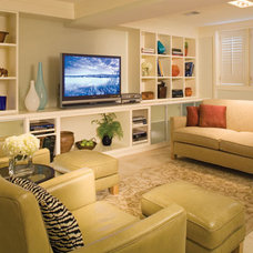 modern  Finished Basement