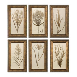 Uttermost - Wheat Grass Framed Art Set of 6 - This set of prints features wooden frames finished in bronze undertones with brown and black distressing and a gray glaze. Prints are under glass.