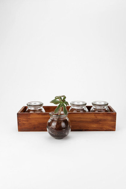 Contemporary Vases by Urban Outfitters