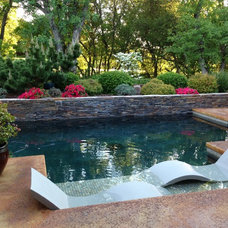 Contemporary Pool by Ledge Lounger LLC
