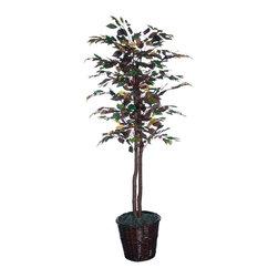 Vickerman - 6' Mystic Ficus Tree - 6' Mystic Ficus Tree, natural hardwood trunks. Dark brown Rattan basket and American made excelsior