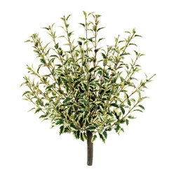 Silk Plants Direct - Silk Plants Direct Oregano Bush (Pack of 6) - Pack of 6. Silk Plants Direct specializes in manufacturing, design and supply of the most life-like, premium quality artificial plants, trees, flowers, arrangements, topiaries and containers for home, office and commercial use. Our Oregano Bush includes the following: