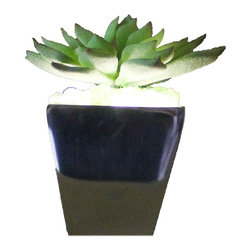 The Firefly Garden - Lumiere - Illuminated Succulents, Agave in Tapered Aluminum - Lumiere is a subtle accent light that blends well with any d̩cor. Designed for a side tables, small nooks, or as a bathroom night light, this arrangement measures 8 inches. It also makes for a perfect gift item alone or in multiples. Available in a variety of succulent and vase combinations. Comes with Lithium Coin 3V battery.