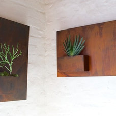 Contemporary Outdoor Pots And Planters by Potted