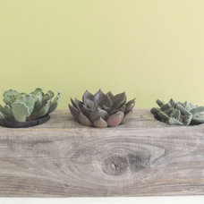 Modern Indoor Pots And Planters by Etsy