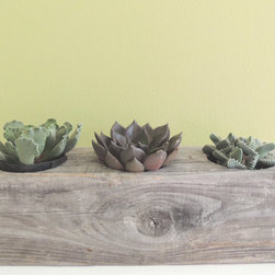 Reclaimed Cypress Rectangular Succulent Planter by Le Brun Designs Inc. - This wooden planter would make a beautiful centerpiece, especially on an outdoor dining table. I love the ash-gray color of the reclaimed wood.