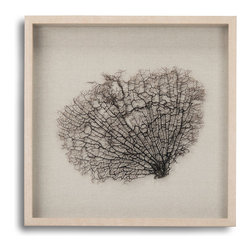 Zentique - Coralie Frame - Perfect for your beach house or if you're just a beachcomber, this ocean-inspired, branching coral art is framed by pale, matching fir.