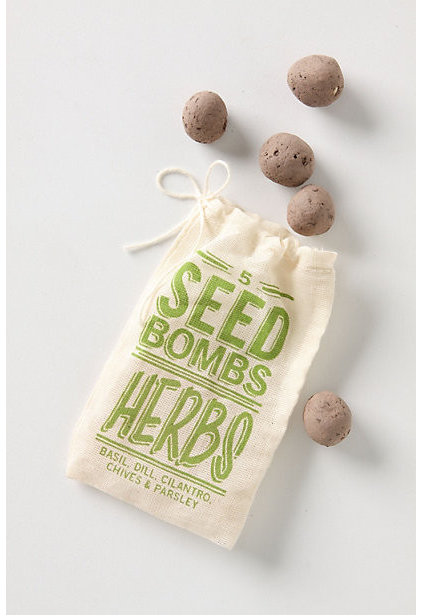 Contemporary Bulbs And Seeds by Anthropologie