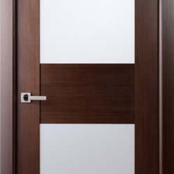 Contemporary African Wenge Interior Single Door With